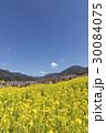 風景 春 里山の写真 30084075