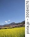 風景 春 桃の花の写真 30084076