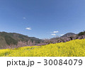 風景 春 桃の花の写真 30084079