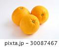 宇和ゴールド 柑橘類 果物の写真 30087467