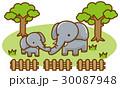 象 ベクター 陸上動物のイラスト 30087948