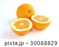 宇和ゴールド 柑橘類 果物の写真 30088829