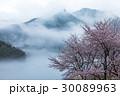 桜 山桜 山の写真 30089963