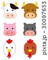 イラスト 豚 鶏のイラスト 30097653
