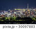 姫路市 夜景 姫路城の写真 30097883
