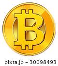 ビットコイン 仮想通貨 暗号通貨のイラスト 30098493