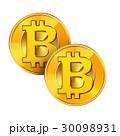 ビットコイン 仮想通貨 暗号通貨のイラスト 30098931