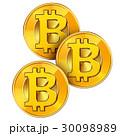 ビットコイン 仮想通貨 暗号通貨のイラスト 30098989
