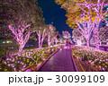 東京都 日本 照明の写真 30099109