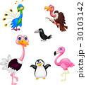 鳥 キャラクター 文字のイラスト 30103142