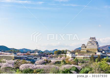 姫路城 桜 青空 30107930