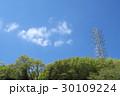 春暖の浮雲 30109224