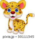 Funny leopard cartoon 30111345