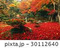 11月 紅葉の徳源院 近江の秋景色 30112640