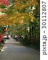 11月 遠州三山の一つ 医王山油山寺 30112807