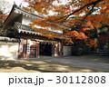 11月 遠州三山の一つ 医王山油山寺 30112808