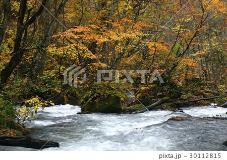10月 石ヶ戸の瀬-紅葉の奥入瀬渓流- 東北の秋  30112815