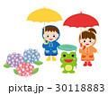 梅雨 紫陽花 ベクターのイラスト 30118883