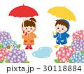 梅雨 紫陽花 ベクターのイラスト 30118884
