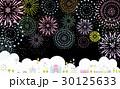 テーマパーク 夜 花火 30125633