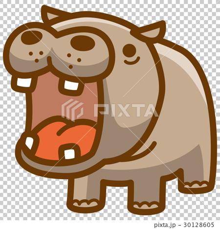 hippo, hippopotamu, vector 30128605