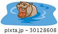 カバ ベクター 動物のイラスト 30128608