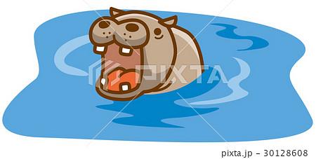 池の中のカバ 30128608