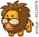ライオン ベクター 動物のイラスト 30129076
