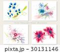 花 水彩画 水彩のイラスト 30131146
