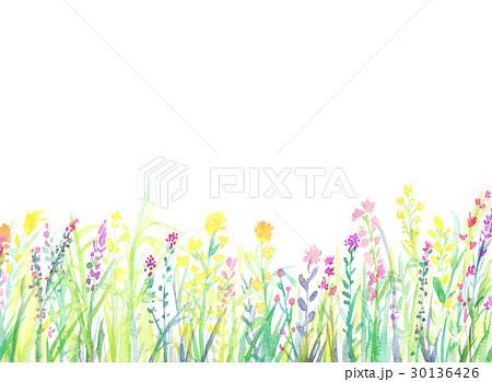 水彩イラスト 花畑 フレーム 30136426