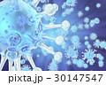 3Dイラスト 微視的 ウィルスのイラスト 30147547