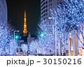 東京タワー けやき坂 イルミネーションの写真 30150216