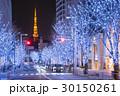 東京タワー けやき坂 イルミネーションの写真 30150261