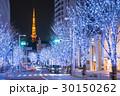 東京タワー けやき坂 イルミネーションの写真 30150262