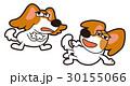 30155066
