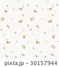 パターン 昆虫 植物 30157944