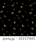 パターン 昆虫 植物 黒地 30157945