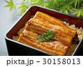 うなぎ 鰻 鰻重の写真 30158013