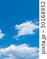 青い空 空 雲の写真 30168952