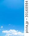 青い空 空 雲の写真 30168984