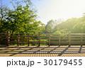 森林 新緑 バルコニーの写真 30179455