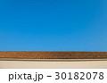 青空 屋根 瓦の写真 30182078