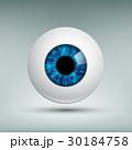 目 眼 ベクタのイラスト 30184758
