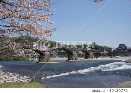 桜の花と錦帯橋 30186776