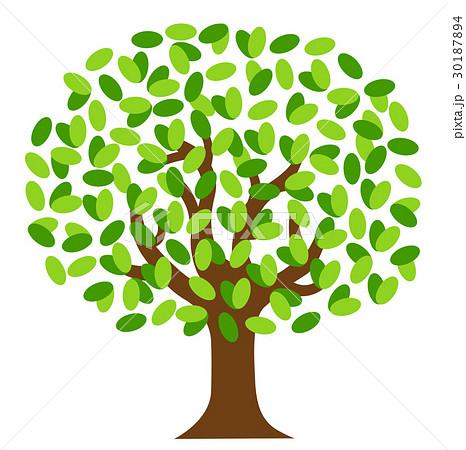 木のイラスト素材 30187894 Pixta