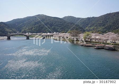 桜並木と錦帯橋の風景 30187902