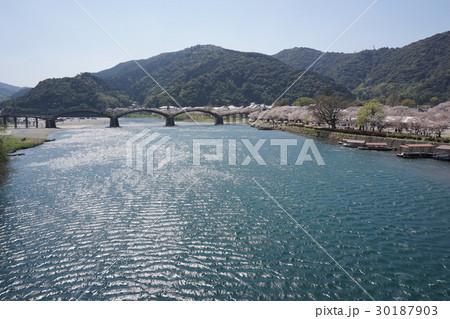 桜並木と錦帯橋の風景 30187903