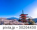 日本を象徴する風景【山梨県・新倉山浅間公園】 30204430