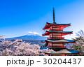 日本を象徴する風景【山梨県・新倉山浅間公園】 30204437