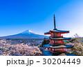 富士山 桜 染井吉野の写真 30204449